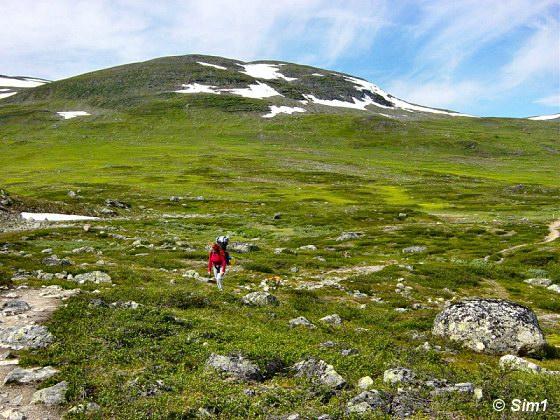 photobAlone on the Fjällen