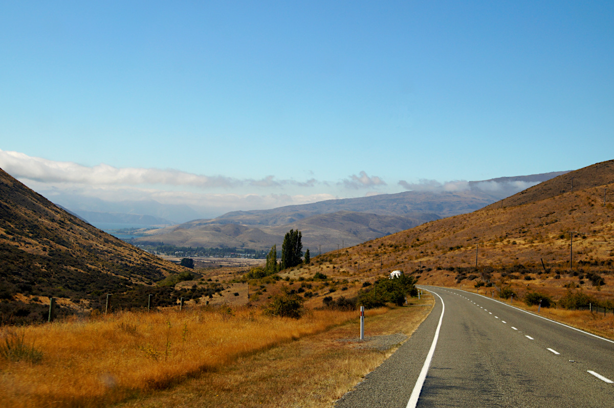 The road to Dunedin