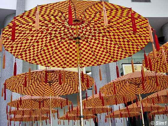 The Royal Umbrellas