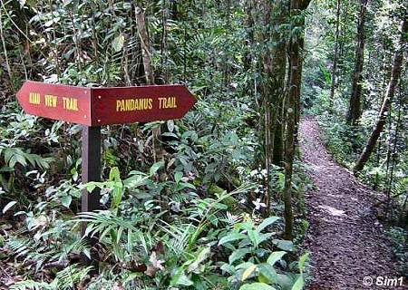 From trail to trail