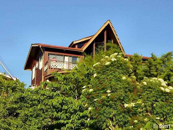 Wildlife Mountain Lodge