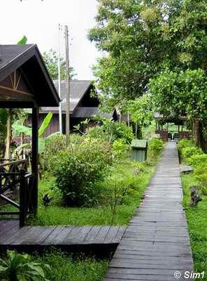 Sukau River Lodge