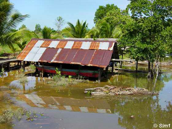 At Padas Village