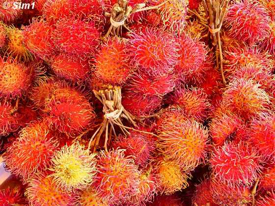 Rambutan fruit