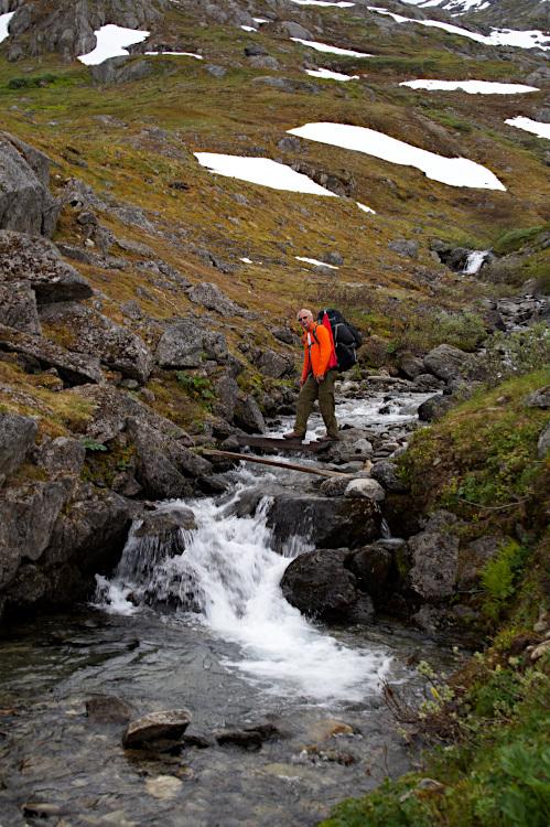 A more primitive bridge over a creek
