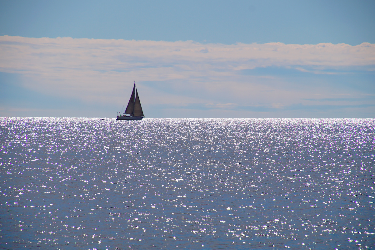 Sailing boat in the Baltic Sea