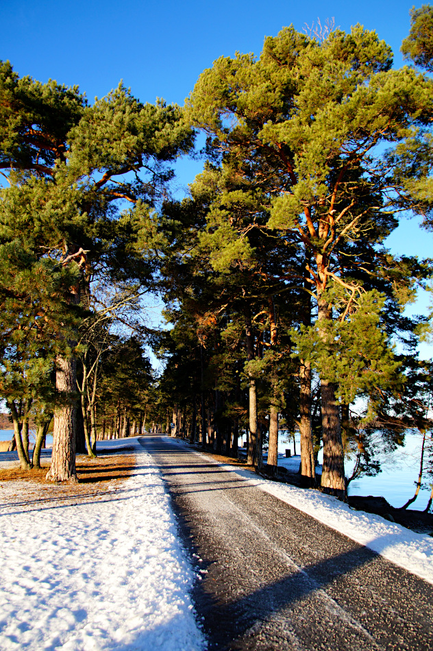 A walk to the peninsula