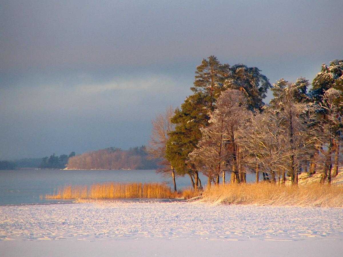 Frozen Lake Mälaren