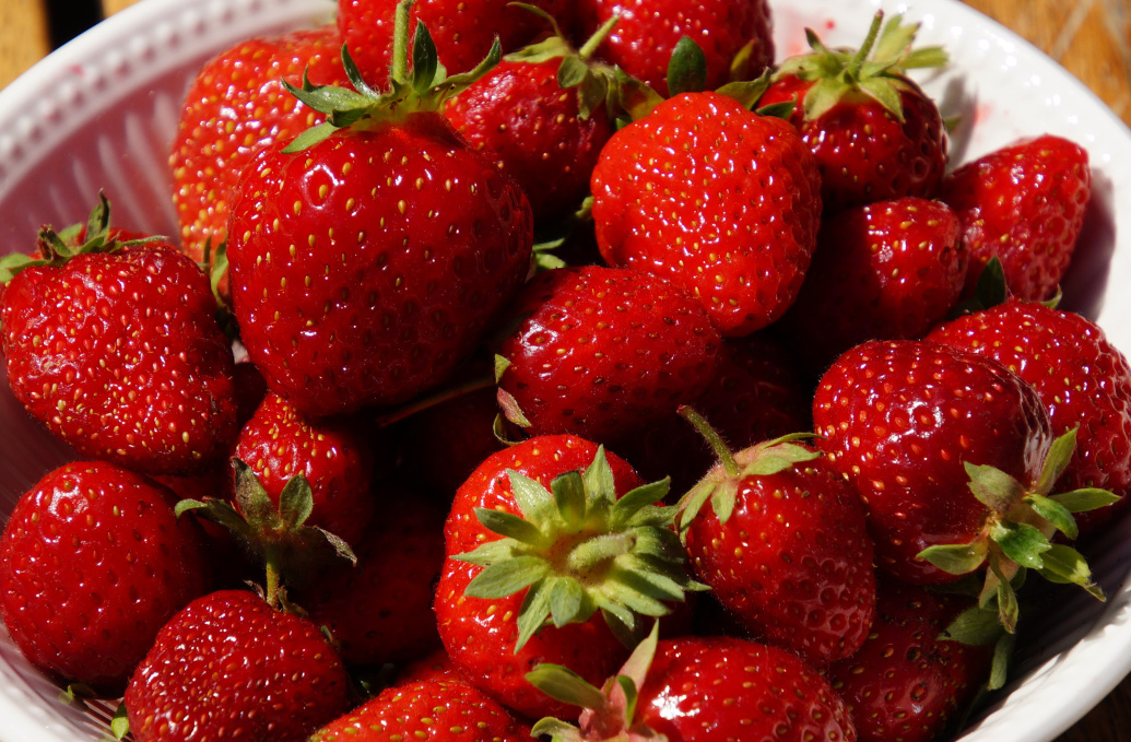 fresh picked strawberries from the garden