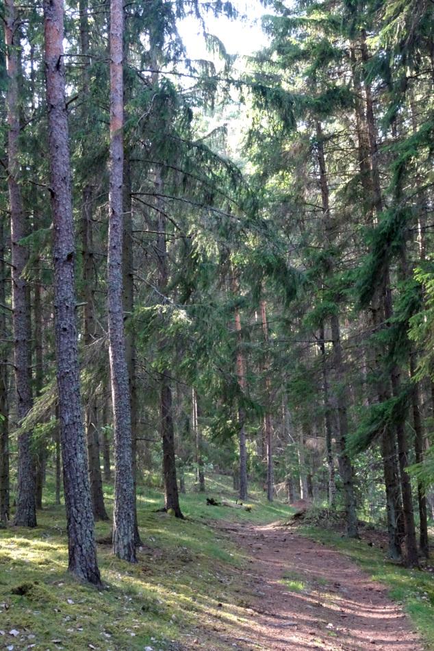 around Sundbyholm
