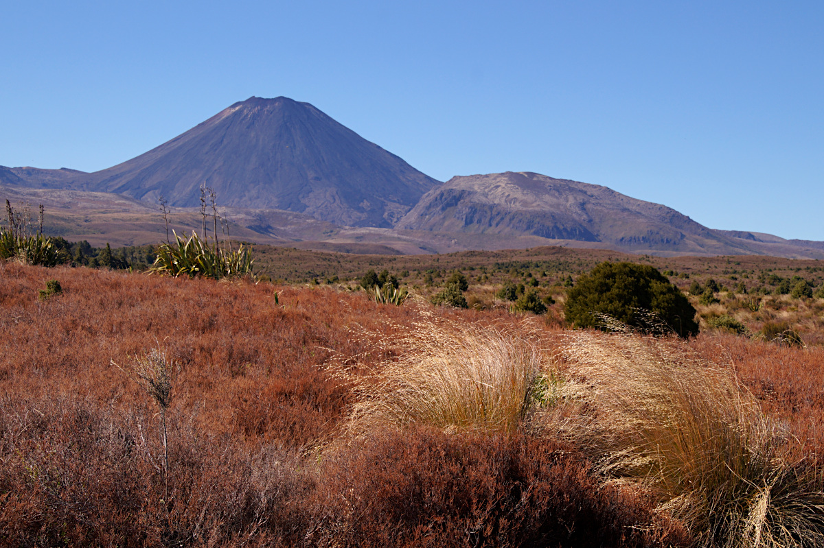 Ngauruhoe