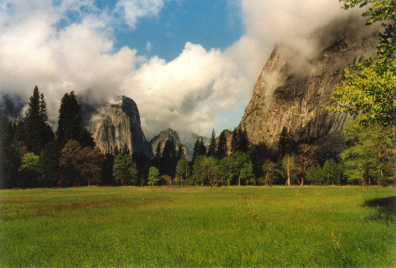 Yosemity National Park